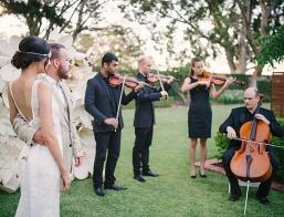 Brisbane Wedding Strings